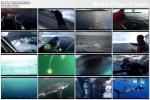 W paszczy rekina ludojada / Great White Appetite (2009) PL.TVRip.XviD / Lektor PL